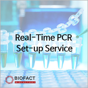 Real-Time PCR Set-up Service